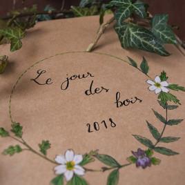 [Réservé à Clémence M]Box «Le jour des bois» avec collier sculpté, livre, et cristal
