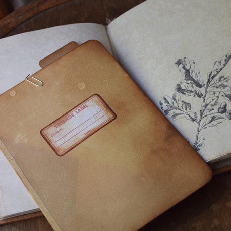 lorliaswood_botanicalspecimen_bookn3_7